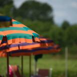 Particolare ombrelloni